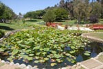 Japanese Garden, Kenneth Hahn State Park - by QH