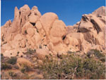 Joshua Tree National Park, by QH