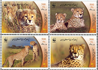 Iranian Cheetah Stamp